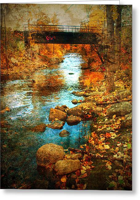 The Bridge By Government Street Greeting Card by Tara Turner