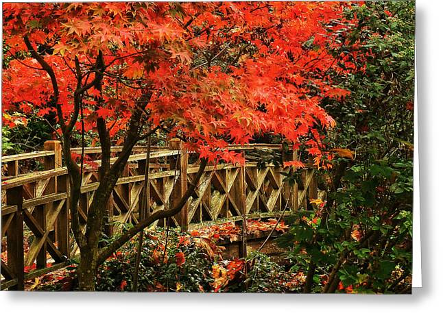 The Bridge In The Park Greeting Card