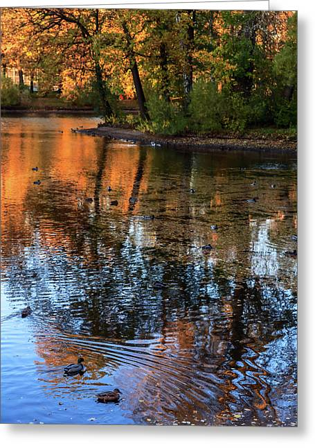 The Bright Colors Of Autumn, Quiet Evenings Are Reflected In The Waters Of The City Pond Greeting Card