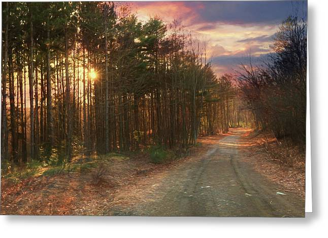 Greeting Card featuring the photograph The Brown Path Before Me by Lori Deiter