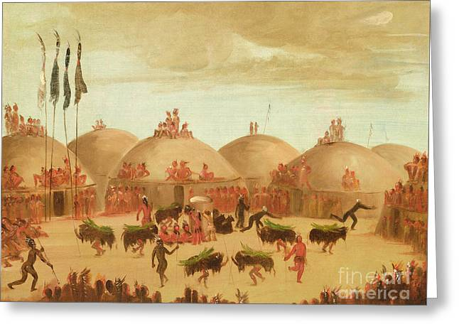The Bull Dance Greeting Card by George Catlin