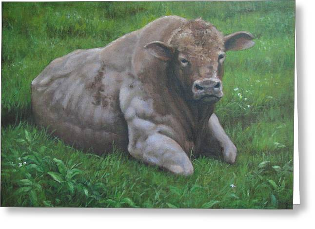 The Bull Greeting Card by Stephen Howell