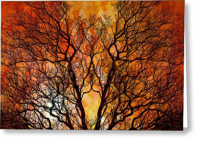 The Burning Bush Greeting Card by Lynn Andrews