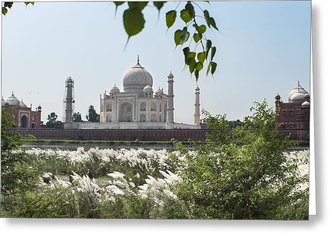 The Calm Behind The Taj Mahal Greeting Card