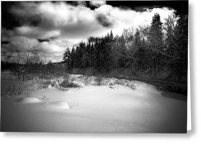 Greeting Card featuring the photograph The Calm Of Winter by David Patterson