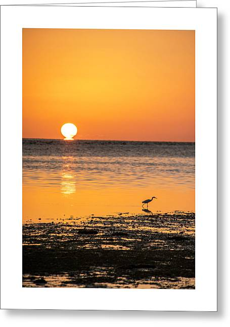 The Calm Side Greeting Card by Marvin Spates