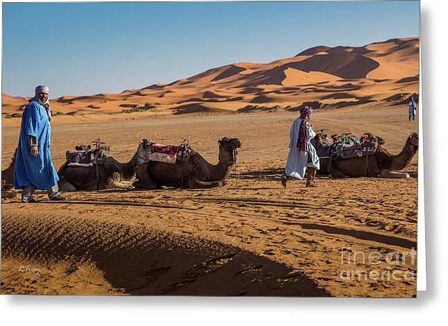 The Camel Driver Of The Beautiful Sahara Desert Greeting Card