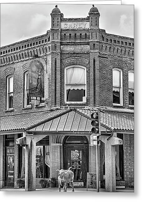 The Carey Building Black And White Greeting Card by JC Findley