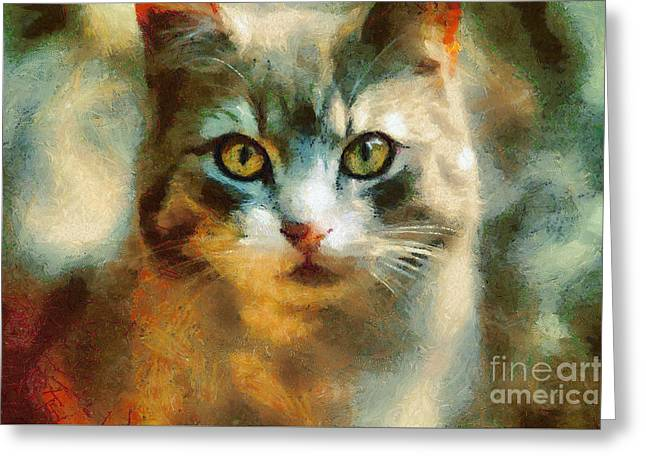 The Cat Eyes Greeting Card