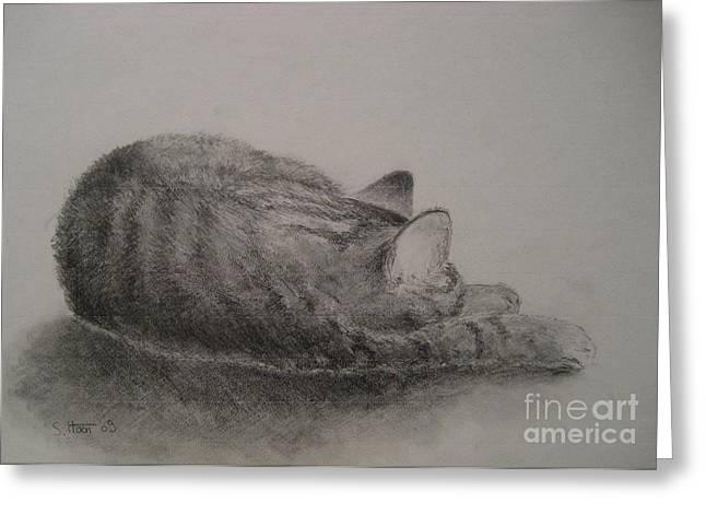 The Cat Series II Greeting Card by Sabina Haas