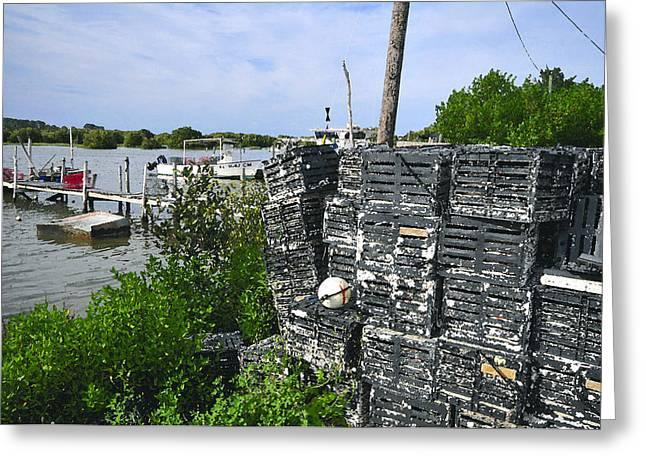 The Cedar Keys Greeting Card by David Lee Thompson