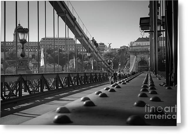 The Chain Bridge, Danube Budapest Greeting Card