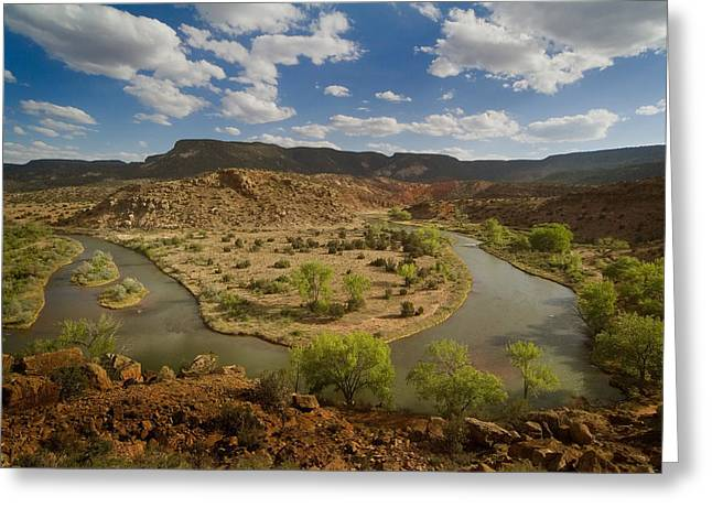 The Chama River Greeting Card by Dusty Demerson