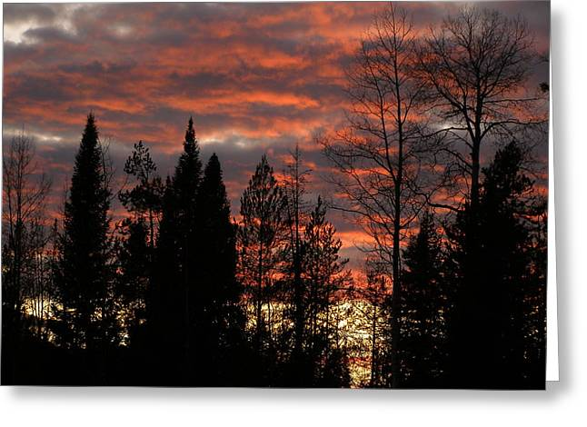 Greeting Card featuring the photograph The Close Of Day by DeeLon Merritt
