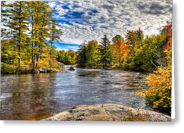 The Colors Of Autumn On The Moose River Greeting Card