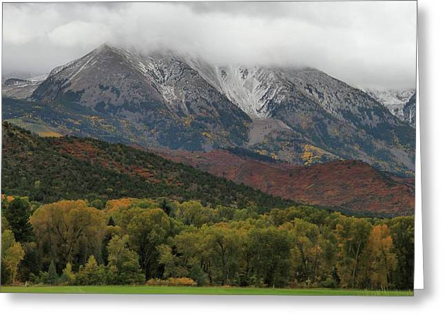 The Colors Of Fall In Colorado Greeting Card by Dan Sproul