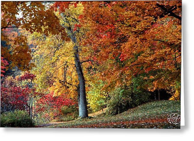 The Colors Of Letchworth Greeting Card by Brad Hoyt