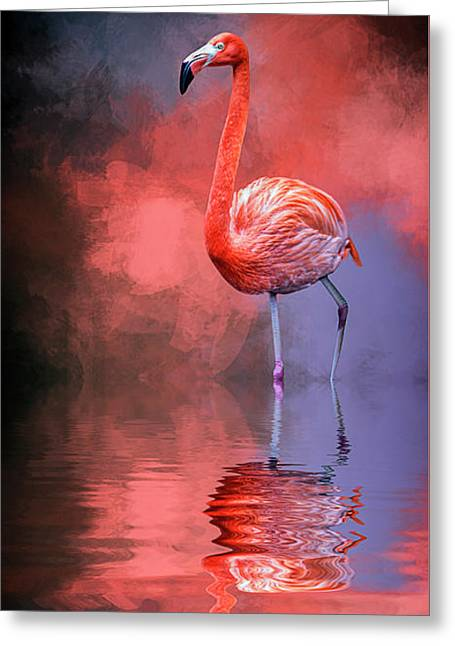 The Colors Of My World Greeting Card by Cyndy Doty