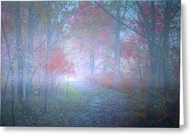 The Colours Hidden By An October Fog Greeting Card