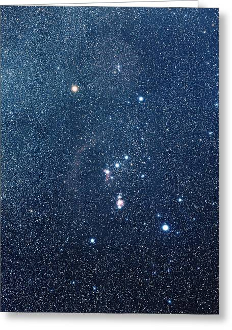 The Constellation Of Orion Greeting Card by Luke Dodd