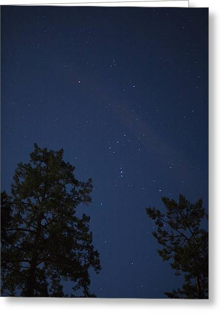The Constellation Orion At Night Greeting Card