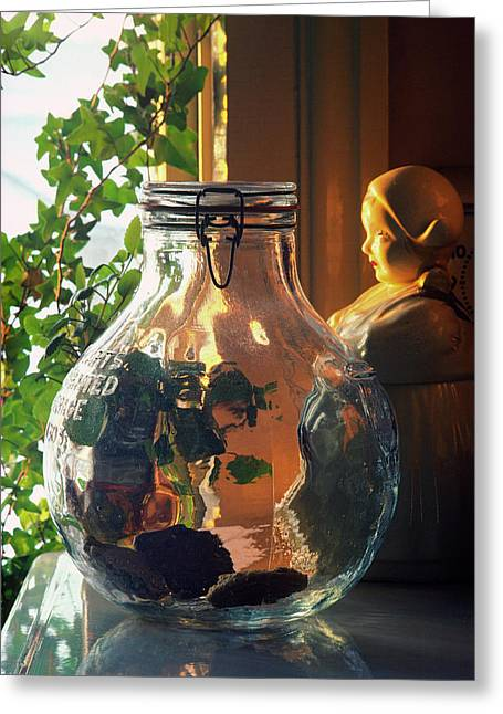 The Cookie Jar Greeting Card by Bruce Thompson