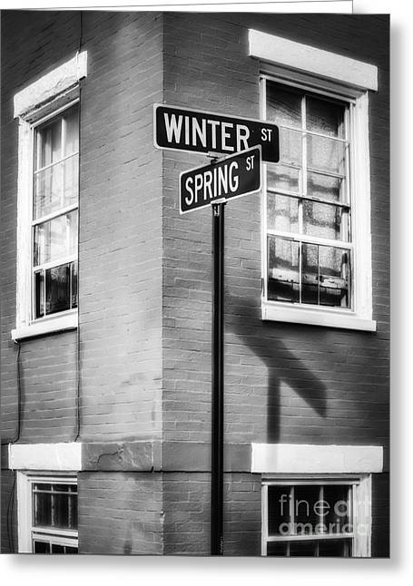 The Corner Of Winter And Spring Bw Greeting Card
