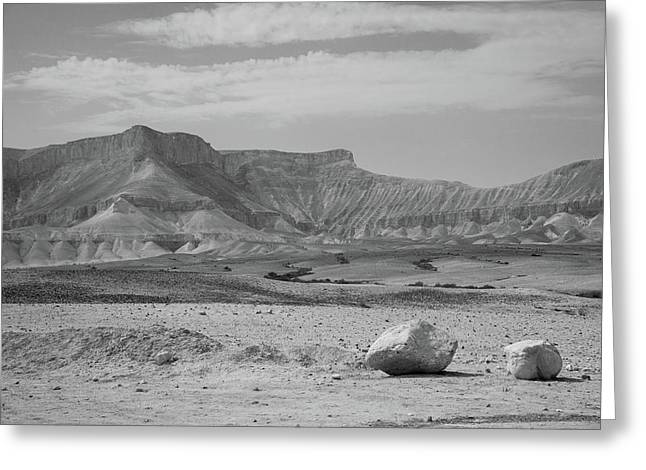 the couple of stones in the desert II Greeting Card