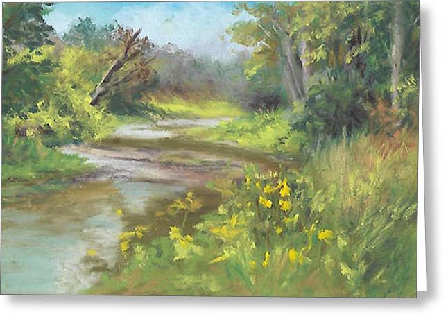 The Creek At 1302 Greeting Card by Terri  Meyer
