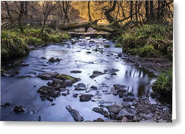 The Creek Greeting Card by William Hole