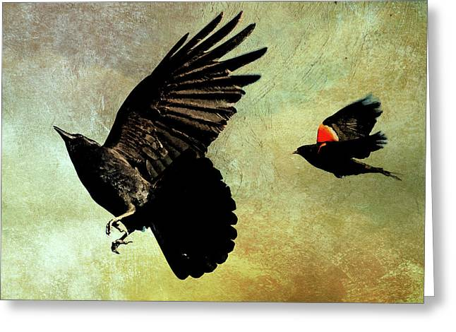 The Crow And The Blackbird Greeting Card