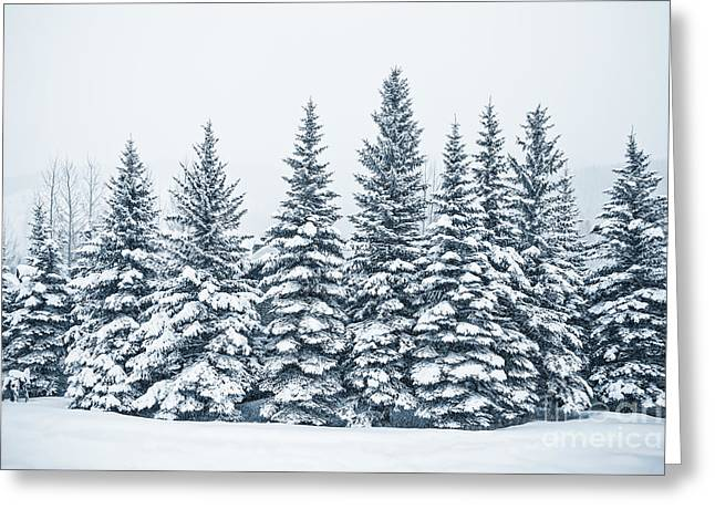 The Crown Of Winter Greeting Card by Evelina Kremsdorf