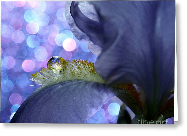The Crystal Ball Of Nature Greeting Card by Krissy Katsimbras