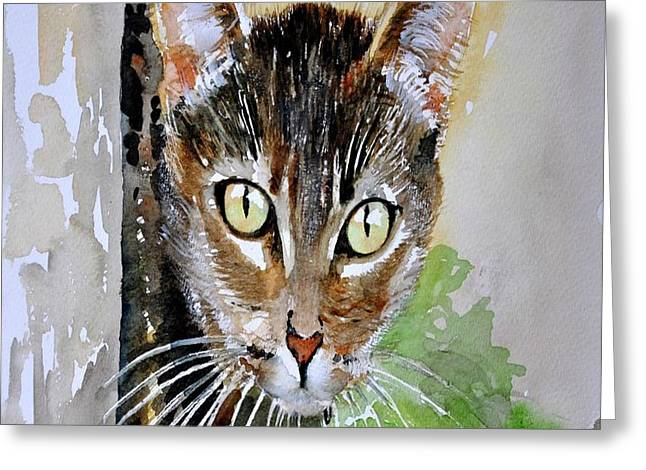 The Curious Tabby Cat Greeting Card