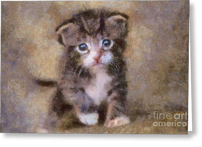The Cute Kitty By Sarah Kirk Greeting Card