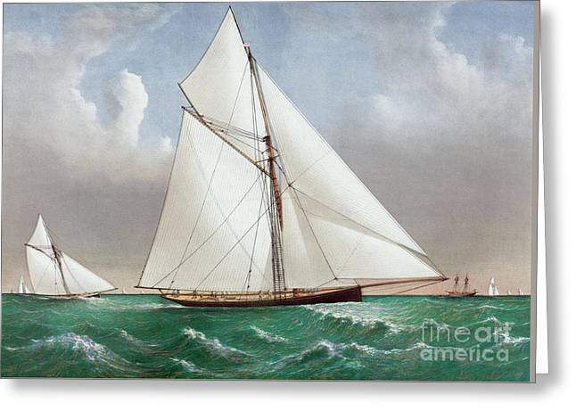 The Cutter Genesta Greeting Card by Currier and Ives