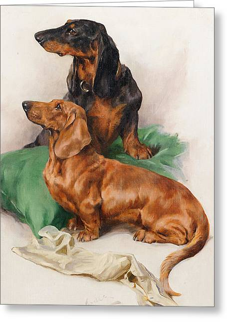 The Dachshunds Greeting Card