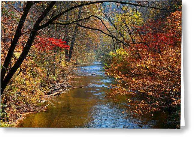 The Dan River Greeting Card by Kathryn Meyer