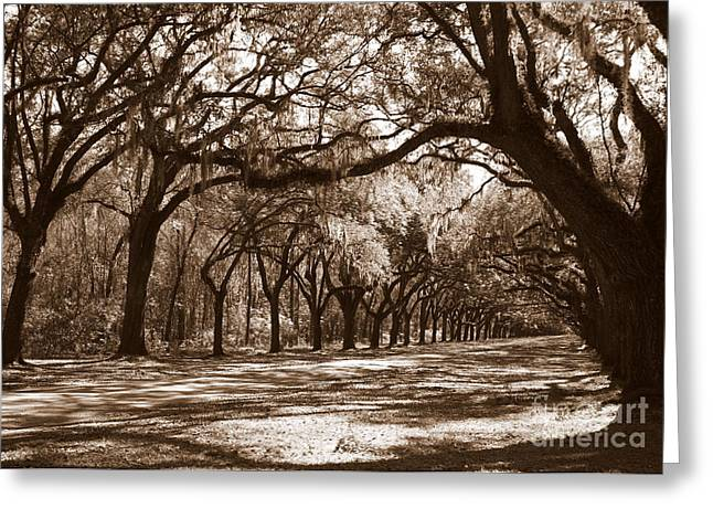 Bowing Greeting Cards - The Dance - Sepia Greeting Card by Carol Groenen