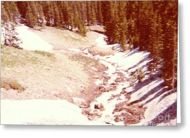 The Day Roaring River Roared At Rocky Mountain National Park With Snow Greeting Card