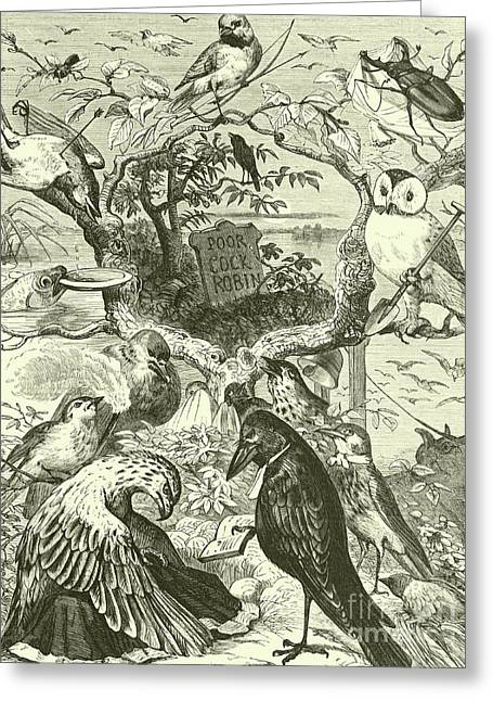 The Death And Burial Of Cock Robin Greeting Card by English School
