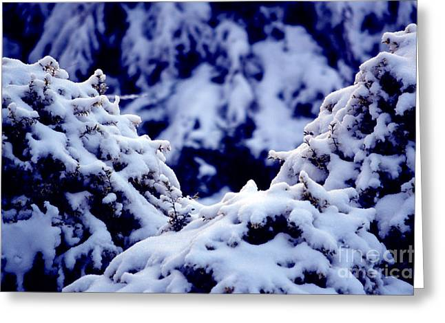Greeting Card featuring the photograph The Deep Blue - Winter Wonderland In Switzerland by Susanne Van Hulst