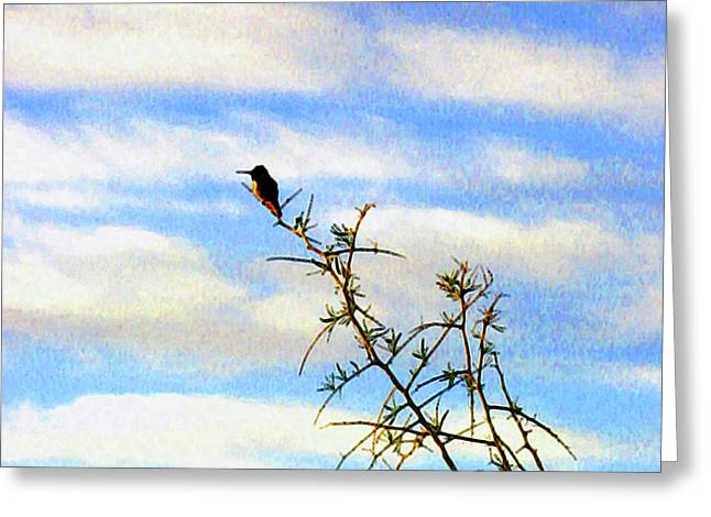 Greeting Card featuring the digital art The Desert Hummingbird by Timothy Bulone