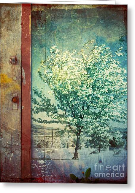 The Door And The Tree Greeting Card by Tara Turner