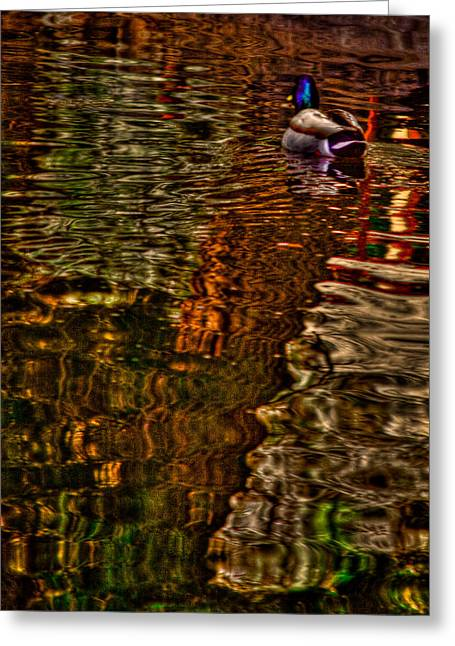 The Duck Pond Greeting Card by David Patterson
