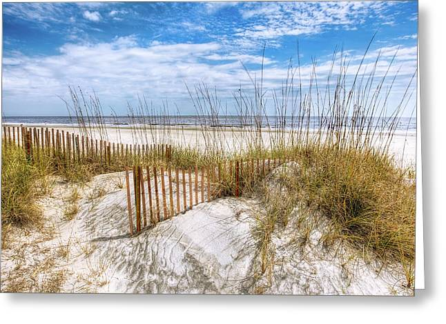 The Dunes Special Greeting Card by Debra and Dave Vanderlaan