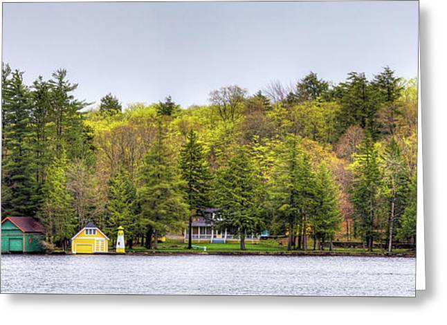 The Early Greens Of Spring Greeting Card by David Patterson