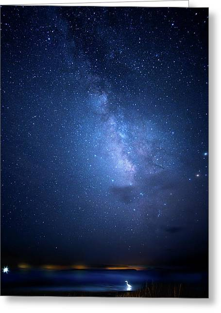 Greeting Card featuring the photograph The Egret And The Milky Way by Mark Andrew Thomas