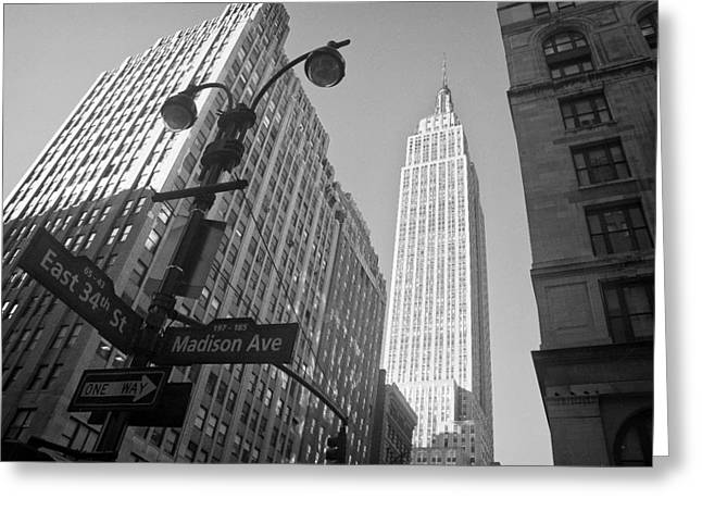 Light Pole Greeting Cards - The Empire State Building in New York City Greeting Card by Ilker Goksen
