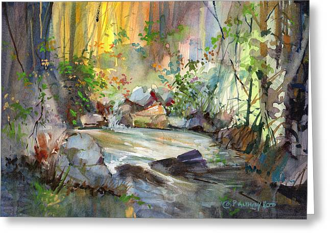 The Enchanted Pool Greeting Card